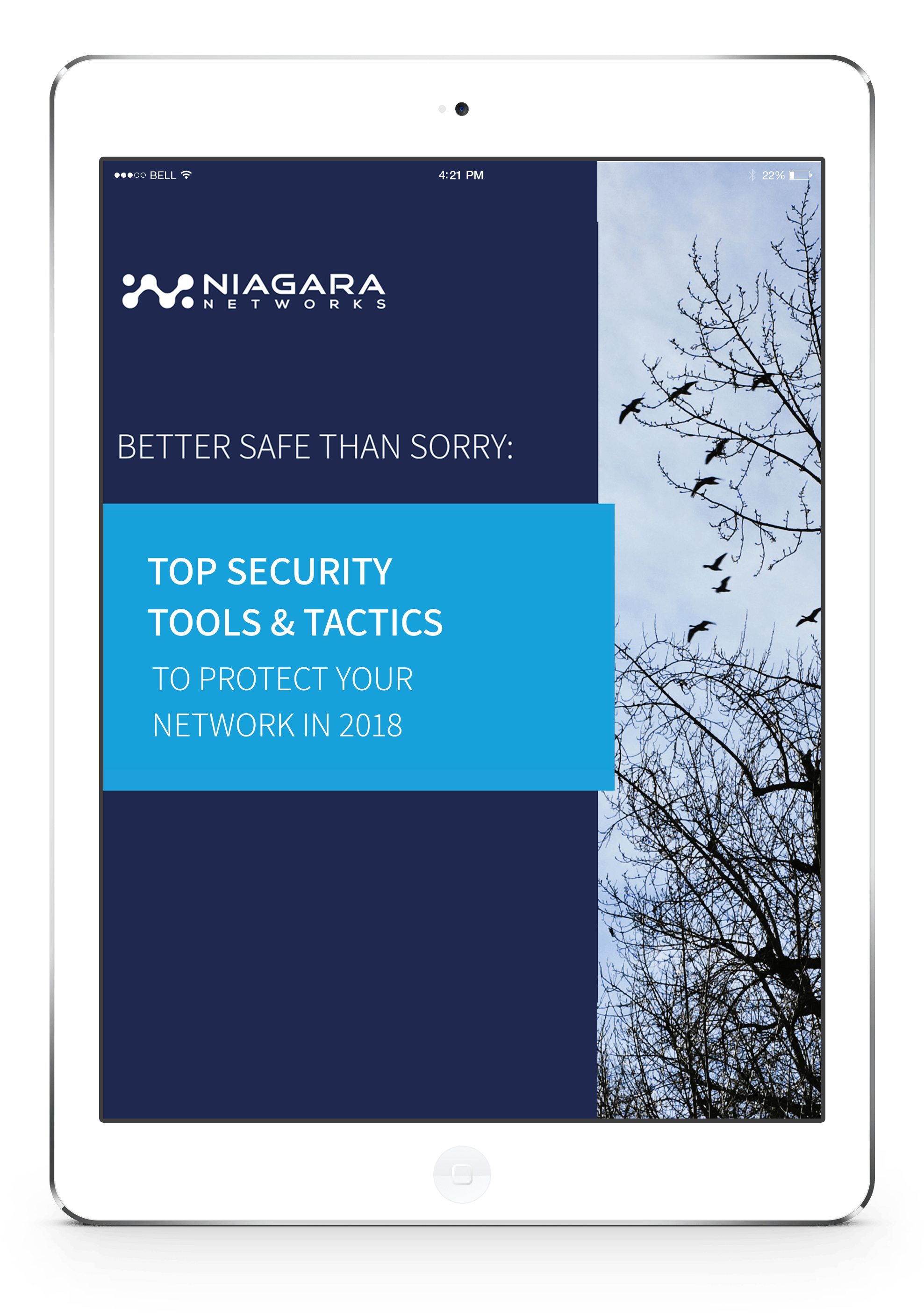 Top Security Tools and Tactics to Protect Your Network in 2018 ebook